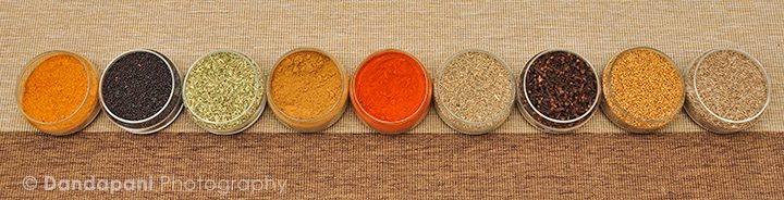 The World of Indian Spices